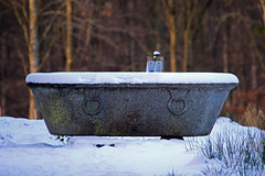 Anyone for a Bath? (lens buddy) Tags: uk winter england snow castle heritage ruins cumbria winterscene castleruins lowther lowthercastlegardens