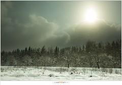 Ardennen - Hautes Fagnes (nandOOnline) Tags: winter bomen sneeuw ardennen belgië natuur wolken veen zon landschap zonlicht ijs sneeuwvlokken hogevenen hautesfagnes winterlandschap natuurgebied eupen sneeuwbui belgiã« implattenven