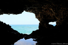 Barbados - Animal Flower Caves (TreeTree2012) Tags: barbados northpoint saintlucy flatfield flowercaves