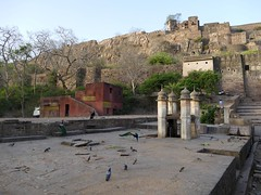 Ranthambore Fort (chdphd) Tags: fort tiger ranthambhore ranthamborefort ranthamborenationalpark ranthamboretigerreserve ranthambhoretigerreserve
