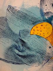 DSC09521 (scott_waterman) Tags: blue detail ink watercolor painting paper lotus gouache bluehue lotusflower scottwaterman