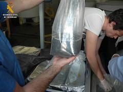 Incautacin de angulas vivas (guardiacivilzaragoza) Tags: angulas cites contrabando seprona