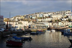 Brixham South Devon  28 and 290416 (3) (Liz Callan) Tags: houses sea dog lighthouse beach water buildings graffiti coast fishermen tulips ben harbour ships restaurants pebbles quay maritime shops hotels bordercollie fishingboats hilly causeway cottages goldenhind torbay sirfrancisdrake berryhead trawlers fishingport fishingtown southdevon williamiii fishingtrawlers steephills brixhamharbour photoborder brixhambreakwater williamprinceoforange lizcallan lizcallanphotography photographborder photographicborder