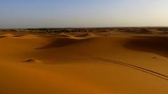 Sahara Ends (macloo) Tags: travel camping sahara trek desert morocco camels