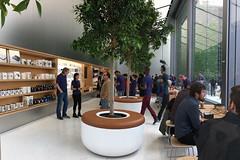 Apple Store - San Francisco Store 1st floor shelves (raluistro) Tags: sanfrancisco apple shopping tech applestore unionsquare