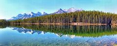 Herbert Lake, Banff National Park, Alberta, Canada - psi(5)124-133 (photos by Bob V) Tags: panorama mountains reflection rockies banff rockymountains mountainlake banffnationalpark canadianrockies banffalberta herbertlake reflectiononwater banffpark banffalbertacanada mountainpanorama