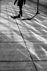 Shadow Walker (Torsten Reimer) Tags: road light usa chicago silhouette reflections walking us illinois shadows unitedstates pavement unitedstatesofamerica pedestrian northamerica schatten
