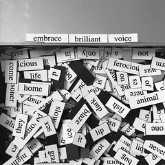 (rivka.r) Tags: words poetry