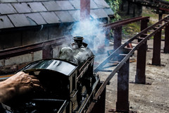 Smoke (Matthew@Photography) Tags: miniature steam glen locomotive wrexham glendouglas miniaturerailway nbr gresford northbritish glenmallie pantyrochain 5inchrailway 5inchtrains wrexhamdistrictmodelengineeringsociety 5inchlocomotive