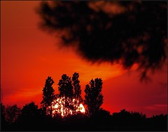 Good Morning ! (Konny D.) Tags: sunrise sonnenaufgang alba salidadelsol leverdusoleil nascerdosol auringonnousu zonsopgang soloppgang soluppgng wschdsoca