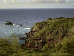CF001440 (professor126) Tags: maui kapalua travelphotography landscapephotography phaseone iq280