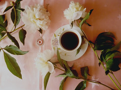 Breakfast (julia.samoilenko) Tags: flowers flower coffee fleur beautiful breakfast fleurs spring amazing sensitive peony stillife printemps marvelous peonies fascinating naturemorte