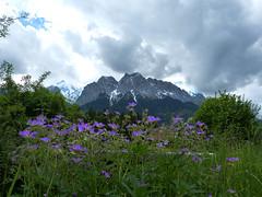 Zugspitze (MsAndi63) Tags: mountain berge alpine aussicht garmischpartenkirchen zugspitze panasoniclumix wettersteingebirge bayerischealpen ostalpen panasoniclumixfz150