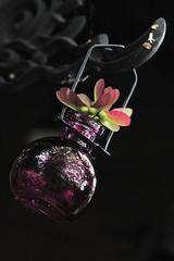 Pink Pods (northernshy) Tags: pink iron wroughtiron vase seedpods pods