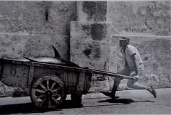 Favignana (Isole Egadi) - Stabilimento Florio (ikimuled) Tags: favignana egadi stabilimentoflorio tonnara archeologiaindustriale vintage
