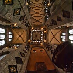 the ceiling II (DeCo2912) Tags: sint 8mm ghent gent walimex samyang niklaskerk