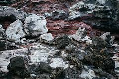 ES8A2335 (repponen) Tags: ocean nature island hawaii rocks maui blowhole monuments nakalele canon5dmarkiii