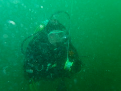 emily in the pea soup (richie rocket) Tags: dorset glug tango underwater