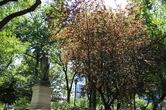 IMG_1440 (ShellyS) Tags: nyc newyorkcity manhattan parks unionsquare unionsquarepark