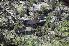 Walnut Canyon (twm1340) Tags: monument nps walnut az canyon national flagstaff