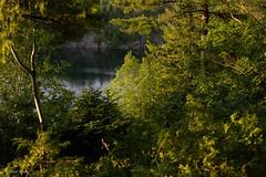 El Lago....Rosado? (ElMalva) Tags: naturaleza lake nature water forest landscape lago atardecer agua afternoon exterior natural outdoor paisaje bosque gatineau gatineaupark exteriores tranquilidad pinklake serenidad naturalpark outdooors