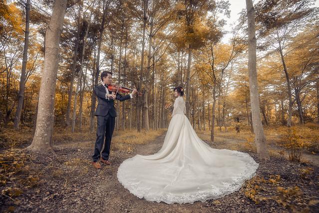 27605246056 10cca88d0b z 台南婚紗景點推薦 森林系仙女的外拍景點