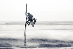 Stilt Fisherman (JoshyWindsor) Tags: ocean longexposure travel holiday beach monochrome blackwhite wave coastal highkey srilanka southcoast mirissa splittoning stiltfishing canoneos6d canonef70300mmf456l