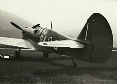 Chahumasy-1986-06-Curtiss-P40-Sion (Chahumasy) Tags: sion warplane curtiss