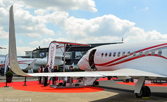 Falcon 900LX (Maxime C-M ) Tags: paris france up airplane photography airport nikon close aircraft aviation exposition falcon salon nikkor spotting avion bourget dassault aroport 2015 constructeur avgeek d3200 lfpb 900lx fhndo