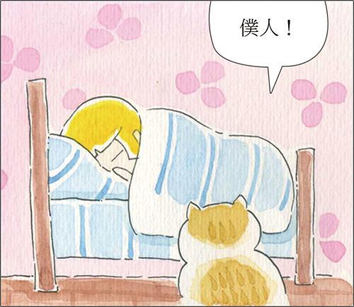 家裡來了一隻貓 僕人起床