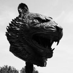 Tiger | Tigre (Marie Kappweiler) Tags: vienna wien china park sculpture castle art statue bronze europe artist kunst skulptur belvedere zodiac schloss château parc vienne zodiaque chinesisch weiwei sternzeichen bildhauer aiweiwei circlesofanimals zodiacheats