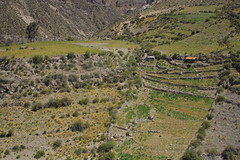 (vlΛиco iиvierиo) Tags: chile desert desierto norte altiplano putre aymara socoroma