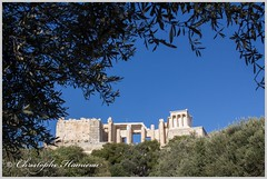 L'Acropole derrire les arbres (Christophe Hamieau) Tags: acropole acropolis antiquity athens athnes europe greece grce antic antiquit greektemple ruin ruine templegrec propyles templedathnanik