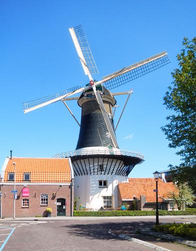 Windlust - Wassenaar