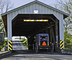 Bridge and Buggy (zuni48) Tags: carriage amish lancaster coveredbridge buggy woodenbridge friendlychallenges