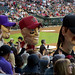 Diamondbacks Fans on Flickr