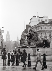 (Paul Nichols) Tags: city white black london monument westminster canon square eos big ben 10 capital lion trafalgar nelsons scan 25 scanned and epson column ef v500 adox 24105l chs25