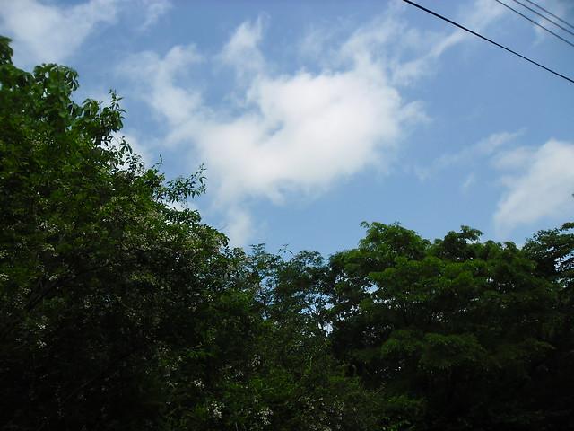 みどりと青い空、ぷっくりうかんだ雲・・・空気もきれいで、そ。 