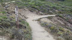 Trail signage (rhyang) Tags: hiking centralcaliforniacoast pointlobosstatereserve