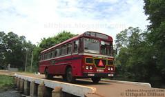CTB_LAL_HINO_POWER_LANGMA_BUS_MAHO_DEPOT (Uthpala Dilhan) Tags: bus ctb depot maho ashok leyland anuradapura sltb langama