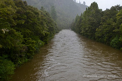 Broken Hills, Puketui Valley, Coromandel (flyingkiwigirl) Tags: broken river gold walks mine hill valley campground doc coromandel tairua brokenhills puketui