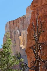 Untitled (jamorg) Tags: utah places brycecanyon