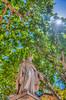 Roi René, Cours Mirabeau, Aix-en-Provence, Provence-Alpes-Côte d'Azur (PACA), Bouches-du-Rhône, France (Stewart Leiwakabessy) Tags: street city trip travel sunset sky people sun holiday france building cars car sunshine statue buildings bomen alley frankreich exterior cloudy outdoor south going down location aixenprovence structure stewart freeway limestone frankrijk lime provence francia aix narow bouchesdurhône leiwakabessy stewartleiwakabessy provencealpescôtedazur 2013 roirené provencealpescôtedazurpaca france2013 ©2013 provence2013 fronkraisch stewartleiwakabessy©2013 ©2013stewartleiwakabessy
