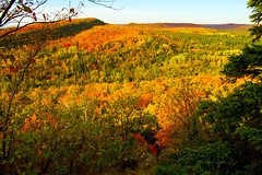 Sunny Days (JohnMiller Photography) Tags: red orange green minnesota yellow hiking fallcolors northshore vista lakesuperior lutsen obergmountain