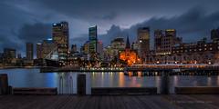 Sydney Cove by night