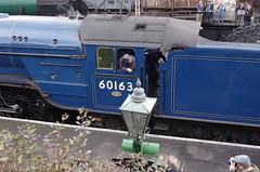 IMGP3284 (Steve Guess) Tags: uk england train railway loco hampshire steam gb locomotive tornado alton brittania braunton m4m ropley 70000 alresford 34046 60163