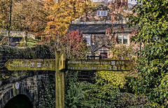 Finger Post (pollylew) Tags: bridge autumn trees canal saddleworth fingerpost uppermill huddersfieldnarrowcanal bridge77 cloggersknollbridge cloggerscottage