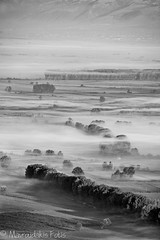 Misty valley in BW (Mavroudakis Fotis) Tags: park morning travel autumn trees houses sky sunlight house mist color building tree green tourism church nature ecology beauty field yellow horizontal misty forest woodland landscape outside dawn countryside spring high scenery colorful europe day exterior village natural outdoor timber swiss country hill foggy meadow meadows peak hills adventure highland national pasture valley fields daytime outlook inversion traveling range saxon sustainability touristic sachs sachsische