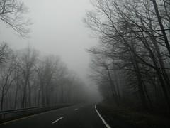 F o g (Danielle Simons) Tags: sky fog grey highway dusk sleepy hollow