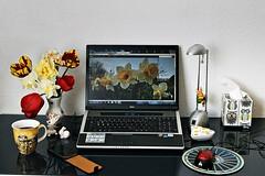 mein Schreibtisch (ingrid eulenfan) Tags: computer handy laptop sony kaffee blumen vase tempo theoffice hase schreibtisch fruchtgummi